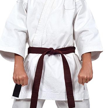 karate brown belt
